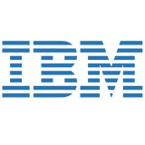 IBM (International Business Machines)